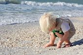 Young Child Picking Up Seashells On Beach By Ocean