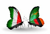 Two Butterflies With Flags On Wings As Symbol Of Relations Italy And Zambia