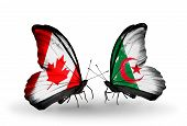 Two Butterflies With Flags On Wings As Symbol Of Relations Canada And Algeria