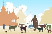 picture of stray dog  - Editable vector illustration of a woman feeding stray dogs in a Buddhist temple where many abandoned pets end up - JPG
