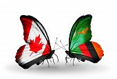 Two Butterflies With Flags On Wings As Symbol Of Relations Canada And Zambia