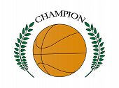 Basketball Champion 2