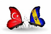 Two Butterflies With Flags On Wings As Symbol Of Relations Turkey And Barbados