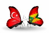 Two Butterflies With Flags On Wings As Symbol Of Relations Turkey And Grenada
