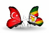 Two Butterflies With Flags On Wings As Symbol Of Relations Turkey And Zimbabwe