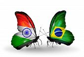 Two Butterflies With Flags On Wings As Symbol Of Relations India And Brazil
