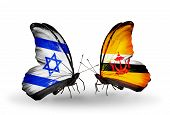 Two Butterflies With Flags On Wings As Symbol Of Relations Israel And Brunei