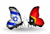 Two Butterflies With Flags On Wings As Symbol Of Relations Israel And East Timor