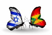 Two Butterflies With Flags On Wings As Symbol Of Relations Israel And Grenada