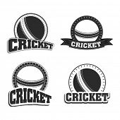 Retro style black and white badge and label with ball and text cricket, sports concept.