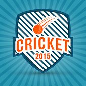 2015 cricket retro style badge or label design on blue rays background.