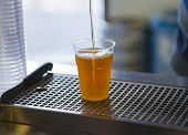 image of drawing beer  - Drawing craft blonde beer in a plastic cup - JPG