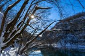 pic of trough  - Sun rays trough The Trees at National park Plitvice - JPG