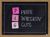 Pride, Integrity And Guts