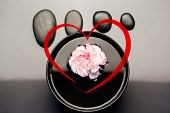Heart against pink and white carnation floating in a black bowl with aligned black pebbles above it
