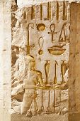 image of ramses  - Egypts  gods and pharaohs in hieroglyphs - JPG