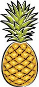 Pineapple Vector Illustration