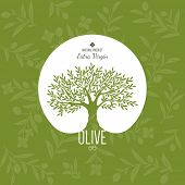 foto of olive trees  - Olive label - JPG