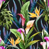 picture of jungle flowers  - Beautiful vector seamless pattern with nice tropical watercolor flowers - JPG