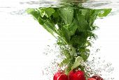 stock photo of radish  - Bunch of radishes falling into water white background isolated - JPG