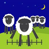 pic of counting sheep  - One cute sheep jumping over low fence with eyes screwed up and four sheep standing on hills and watching it dark navy colored sky blue stars and yellow crescent - JPG