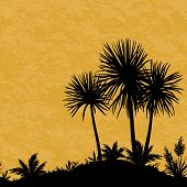 pic of tropical plants  - Exotic Horizontal Seamless Landscape - JPG