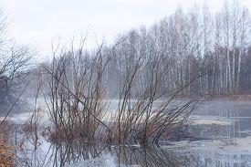 picture of nightfall  - nightfall on the hunting lake at spring - JPG
