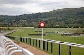 picture of race track  - finishing line at cheltenham race course - JPG