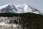 Coolorado Winter Mountains
