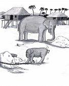 Elephants Held Captive