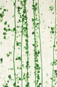stained glass green confetti fused texture background