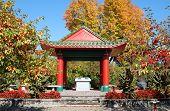 Autum Pagoda
