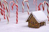 Christmas Ginger Bread Cottage In Candy Cane Forest