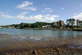 Sketrick Castle On Strangford Lough