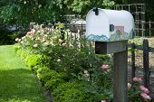 Picture of rural mailbox.