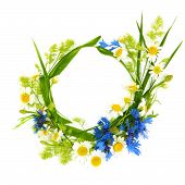 Floral Round Frame Of Flowers