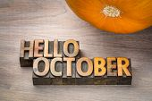 hello October greeting card - letterpress wood type blocks against grained wood with a pumpkin poster