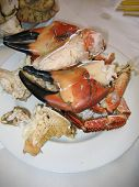 Large Cooked Crab Claws