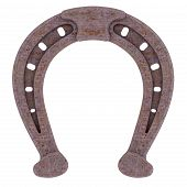 Decorative Rusty Horseshoe
