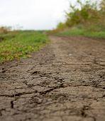 Dry Dirt Road.