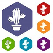 Domestic Cactus Icon. Simple Illustration Of Domestic Cactus Vector Icon For Web poster
