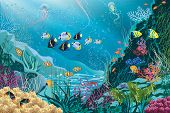stock photo of saltwater fish  - Underwater landscape with various water plants and swimming tropical fishes - JPG