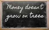 Expression -  Money Doesn't Grow On Trees - Written On A School Blackboard With Chalk