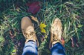Casual Unisex Boots With Colorful Autumn Fallen Leaves. Autumn Fall Scene. Conceptual Image Of Legs  poster