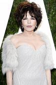 LOS ANGELES - FEB 26:  Carole Bayer Sager arrives at the 2012 Vanity Fair Oscar Party  at the Sunset