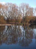 Lagoa do espelho