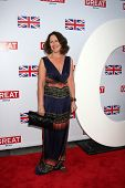 LOS ANGELES - FEB 24:  Fiona Shaw arrives at the GREAT British Film Reception at the British Consul