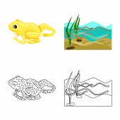 Vector Design Of Wildlife And Bog Icon. Collection Of Wildlife And Reptile Stock Vector Illustration poster