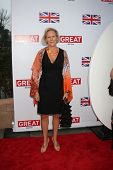 LOS ANGELES - FEB 24:  Phyllida Lloyd arrives at the Great British Film Reception at the British Con