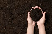 Woman Holding Fertile Soil In Hands, Closeup With Space For Text. Gardening Season poster